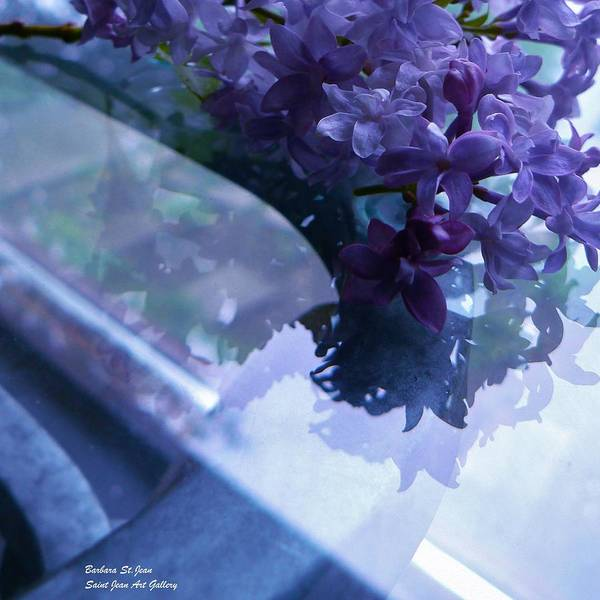 Photograph - Lilac Glass by Barbara St Jean