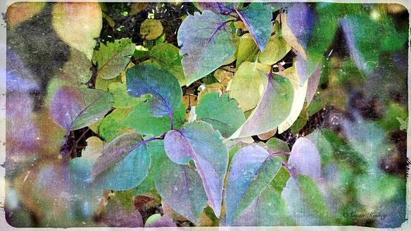 Digital Art - Lilac Leafs 2 by Susan Kinney