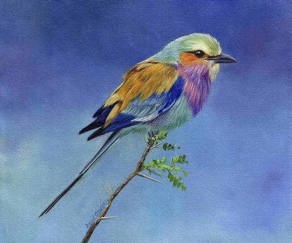 David Painting - Lilacbreasted Roller by David Stribbling