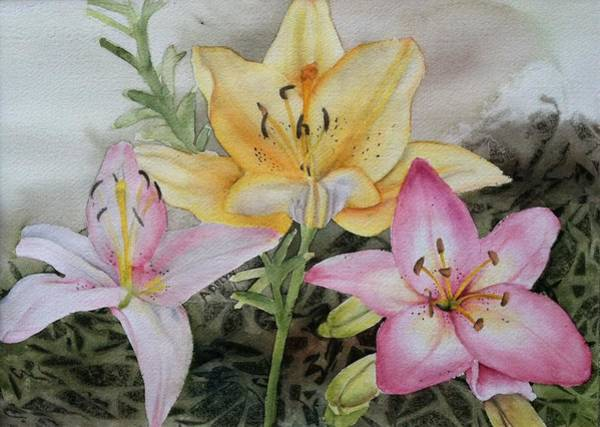 Wall Art - Painting - Lilies by Addy Boutell