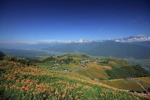 Taiwan Photograph - Lilies Hill by Atnitsuj@taiwan
