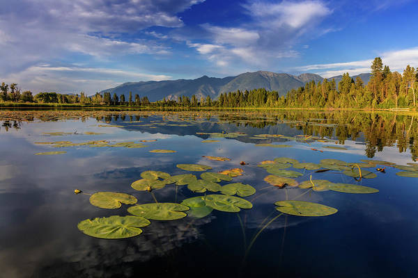 Swan Valley Photograph - Lilly Pads And Swan Range Reflects by Chuck Haney