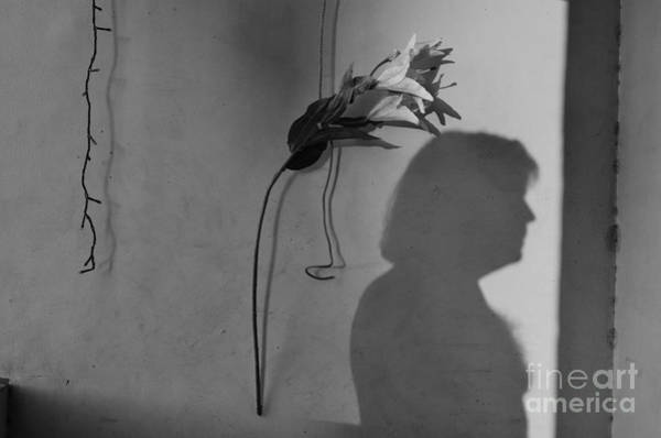 Photograph - Lily And Male Figure Shadow by Christopher Shellhammer