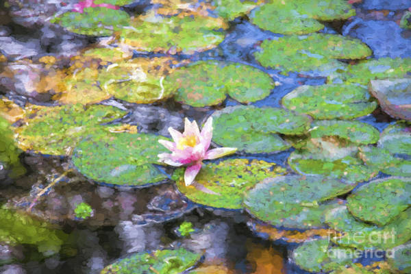 Wall Art - Photograph - Lily In Monet's Pond by Sheila Smart Fine Art Photography