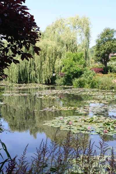 Claude Monet Photograph - Lily Pond - Monets Garden - France by Christiane Schulze Art And Photography