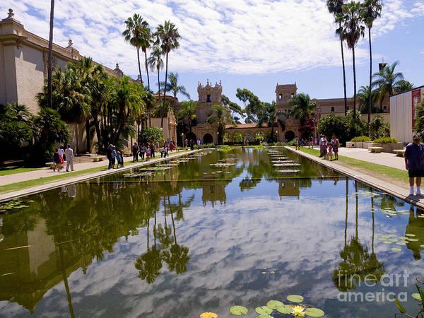 Photograph - Dreaming Of San Diego by Brenda Kean