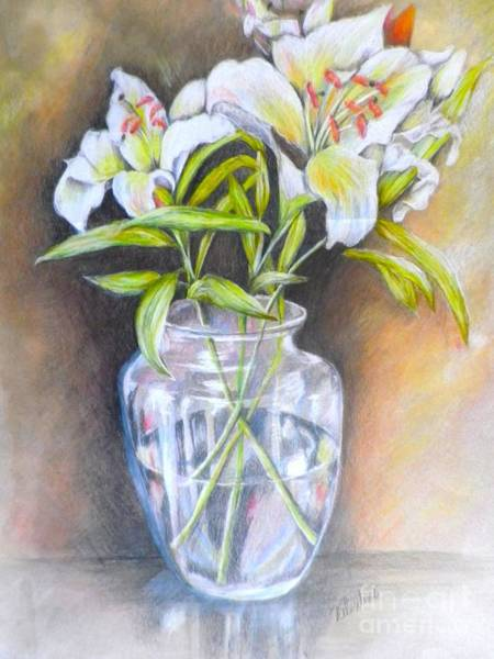 Wall Art - Drawing - Lily White by Sandra Valentini