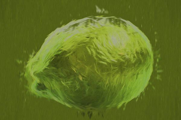 Photograph - Lime Food Digital Painting by David Haskett II