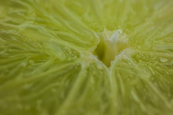 Photograph - Lime Food Macro by David Haskett II
