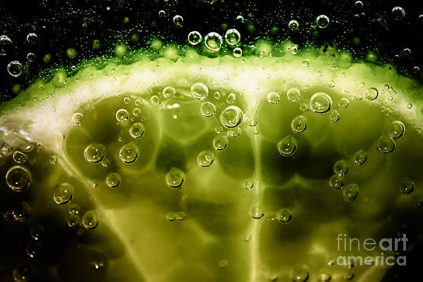 Wall Art - Photograph - A Slice In Lime by Simon Bratt Photography LRPS