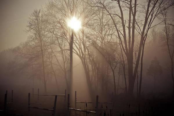 Fence Mixed Media - Limerick Fog by Trish Tritz