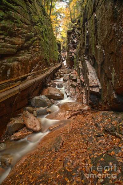 Photograph - Lincoln New Hampshire Flume Gorge by Adam Jewell