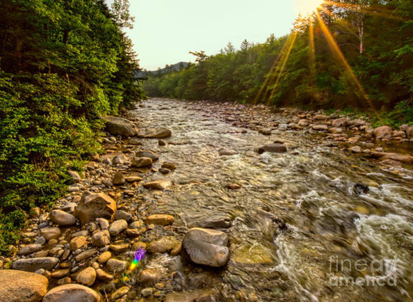 Photograph - Lincoln Woods Sunstar by Jemmy Archer