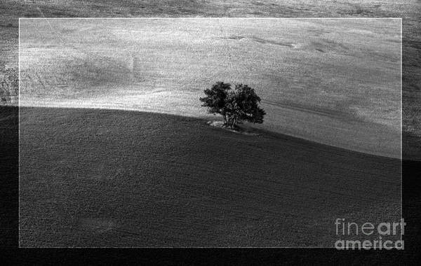 Photograph - Line Between Two Acres by Heiko Koehrer-Wagner