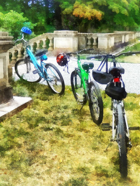 Photograph - Line Of Bicycles In Park by Susan Savad