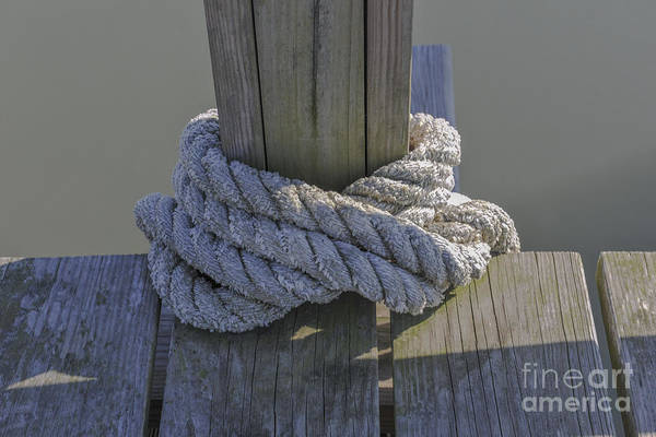 Photograph - Lines Around Dock by Dale Powell
