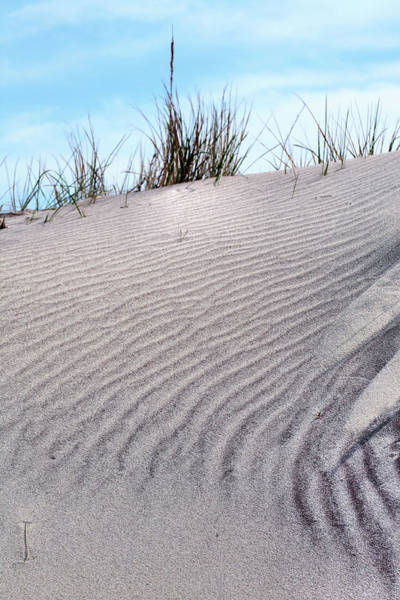 Photograph - Lines In The Sand by JC Findley