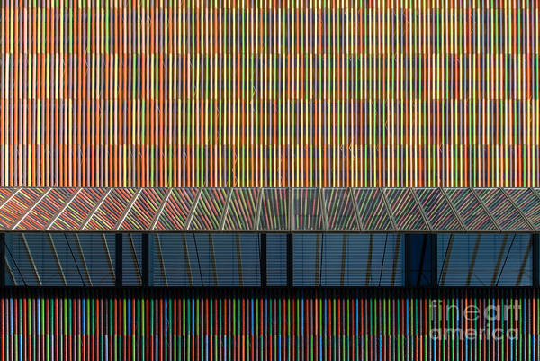 Photograph - Lines - Pop by Hannes Cmarits