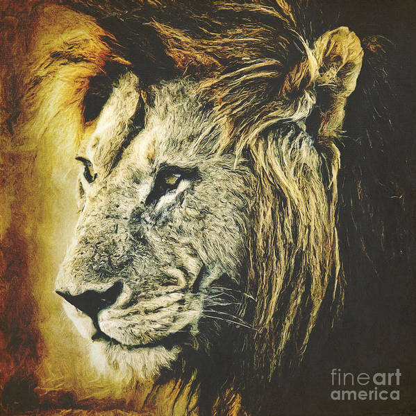 Digital Art - Lion by Angela Doelling AD DESIGN Photo and PhotoArt