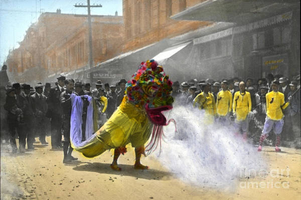 Photograph - Lion Dance Parade For Chinese New Year San Francisco Chinatown Circa 1900 by California Views Archives Mr Pat Hathaway Archives