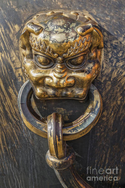 Photograph - Lion Detail On Golden Pot In The Forbidden City by Bryan Mullennix