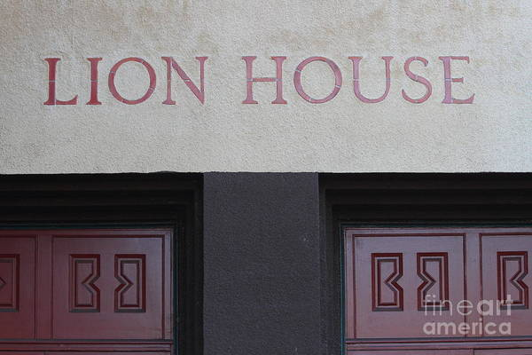 Photograph - Lion House 7d27293 by Wingsdomain Art and Photography