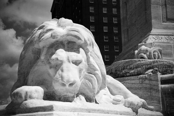 Photograph - Lion In Niagara Square by Beverly Stapleton