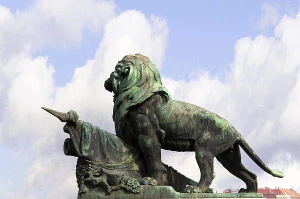 Photograph - Lion Of Hungary by Brenda Kean
