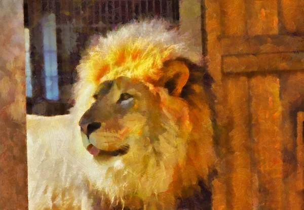 Painting - Lion Painting by Dan Sproul