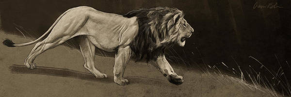 Wall Art - Digital Art - Lion Sketch by Aaron Blaise
