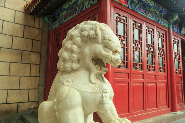 Beijing Photograph - Lion Statue, Tea Shop Near Shopping by Stuart Westmorland