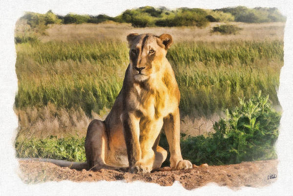 Painting - Lioness Watching by Dean Wittle