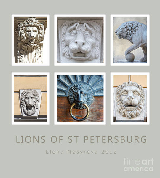 Photograph - Lions Of St Petersburg by Elena Nosyreva