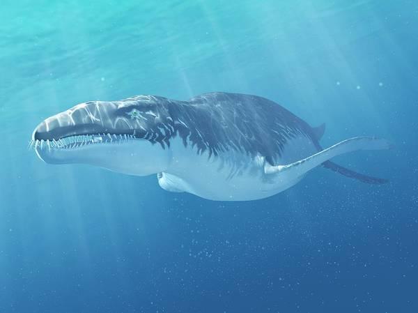 Full Length Digital Art - Liopleurodon Marine Reptile, Artwork by Sciepro