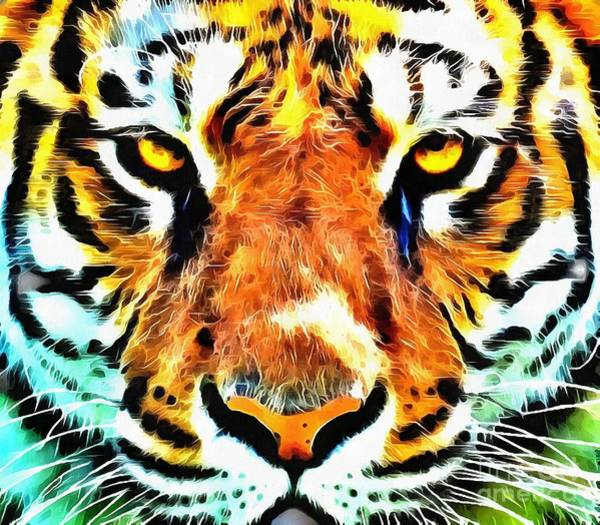 Painting - Lit Tiger Face by Catherine Lott