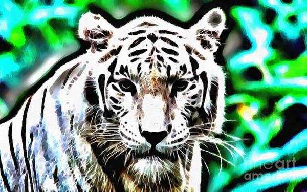 Painting - Lit White Tiger Stare by Catherine Lott