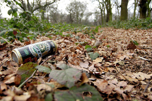 Litter Photograph - Litter by Gustoimages/science Photo Library