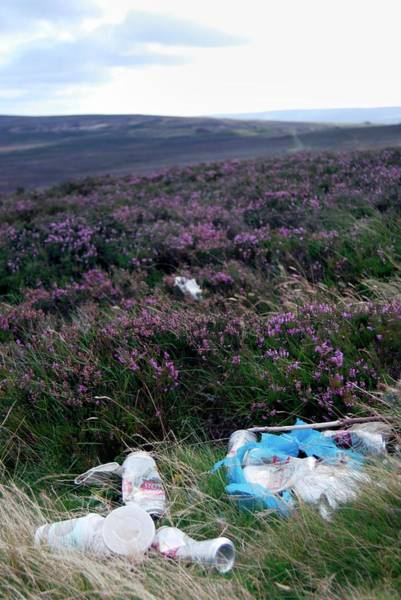Wall Art - Photograph - Litter On Moorland by Ian Gowland/science Photo Library