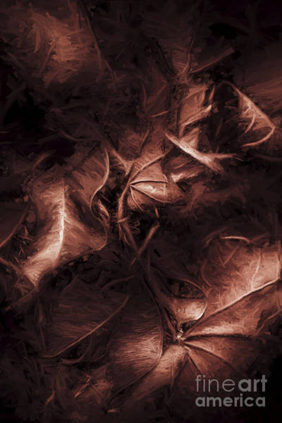 Photograph - Litterfall In Autumn by Jorgo Photography - Wall Art Gallery