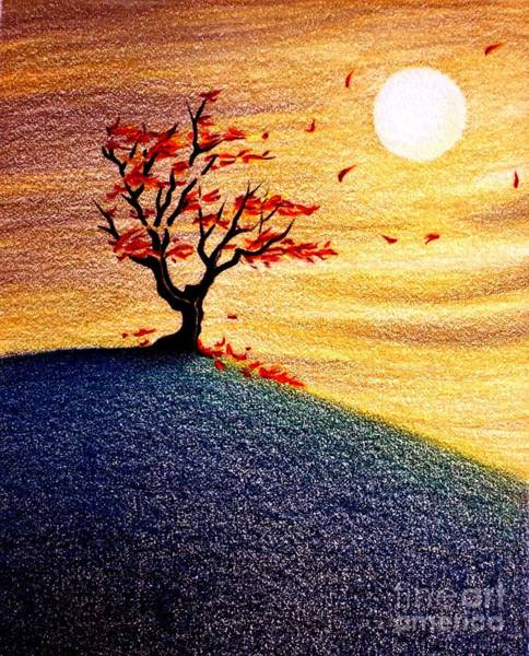 Primary Colors Drawing - Little Autumn Tree by Danielle R T Haney