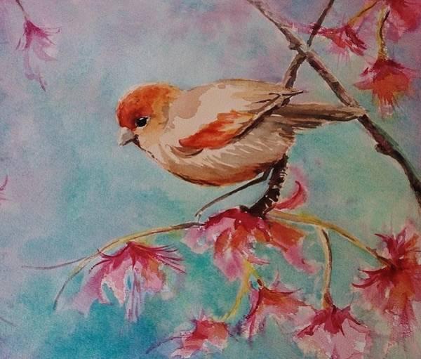 Painting - Little Bird  by Kathy  Karas