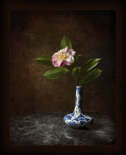 Photograph - Little Camellia In Vase by Endre Balogh