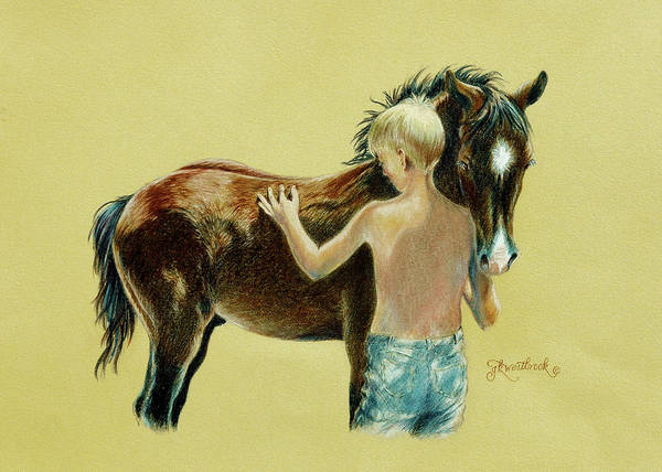 Drawing - Little Colts by Jill Westbrook