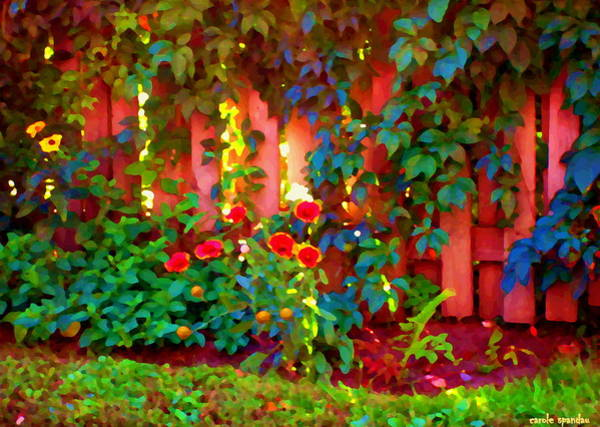 Painting - Little Country Scene Pink Flowers Climbing Leaves On Wood Fence Colors Of Quebec Art Carole Spandau by Carole Spandau