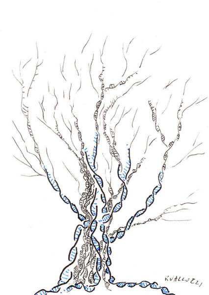 Semi Abstract Drawing - Little Dna Tree by Regina Valluzzi