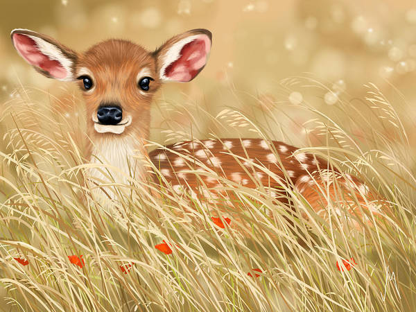 Fawn Painting - Little Fawn by Veronica Minozzi