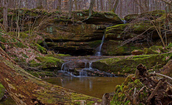 Photograph - Little Gem In Geauga by Torrey McNeal