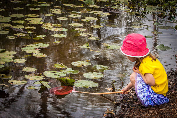 Photograph - Little Girl Looking For Little Fish by James Woody
