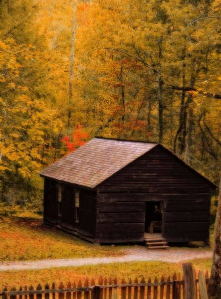 Photograph - Little Greenbrier Schoolhouse In Autumn  by Dan Sproul