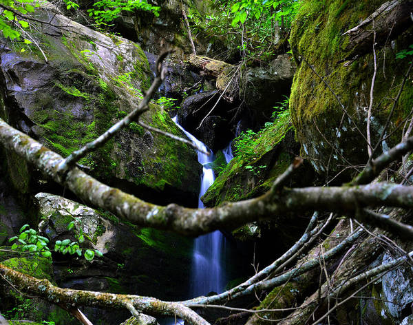 Wall Art - Photograph - Little Grotto Falls by David Lee Thompson